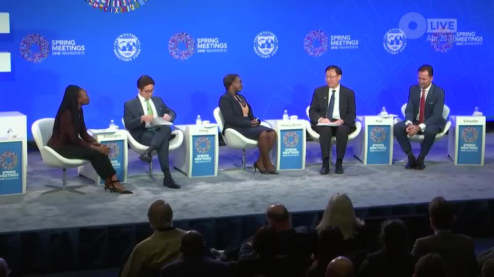 Attracting Private Investment in Sub-Saharan Africa - Clip13 Hua