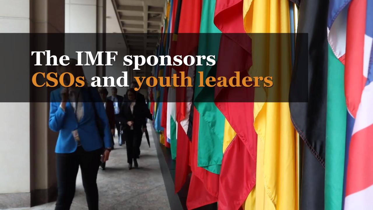 IMF CSOs and Youth Fellowship Program