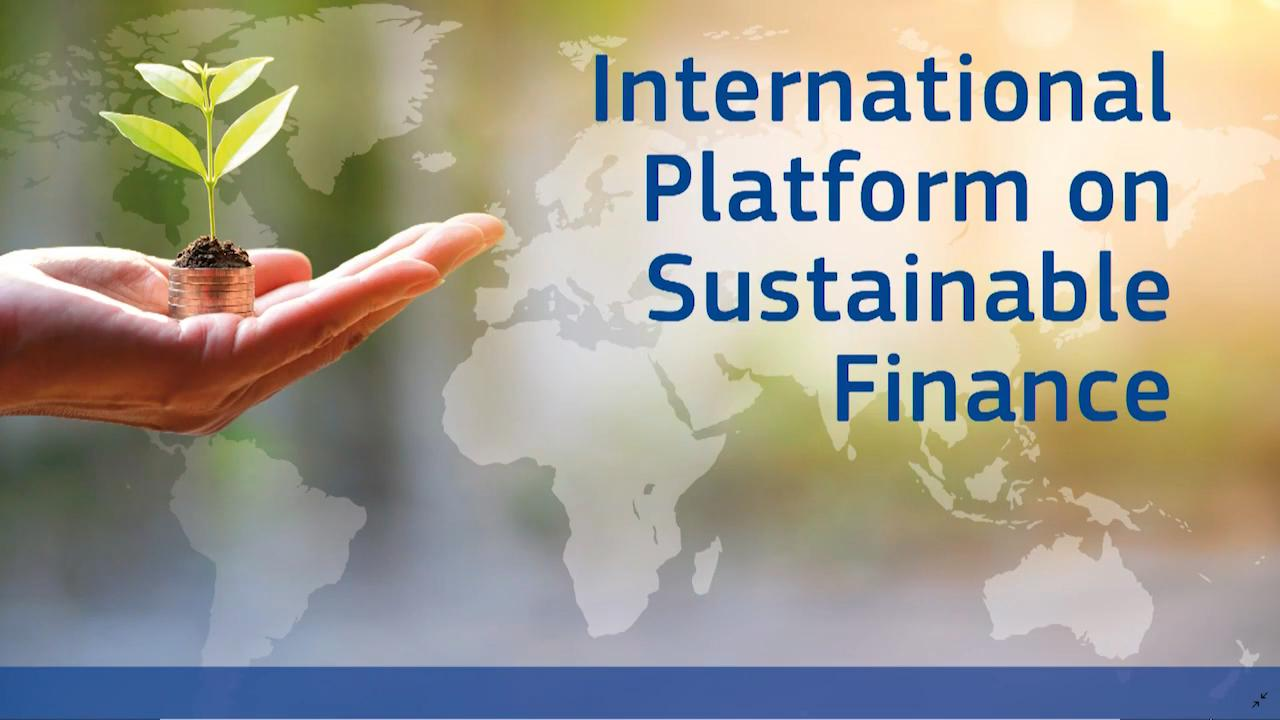 International Platform on Sustainable Finance:A global approach for financing the green transition
