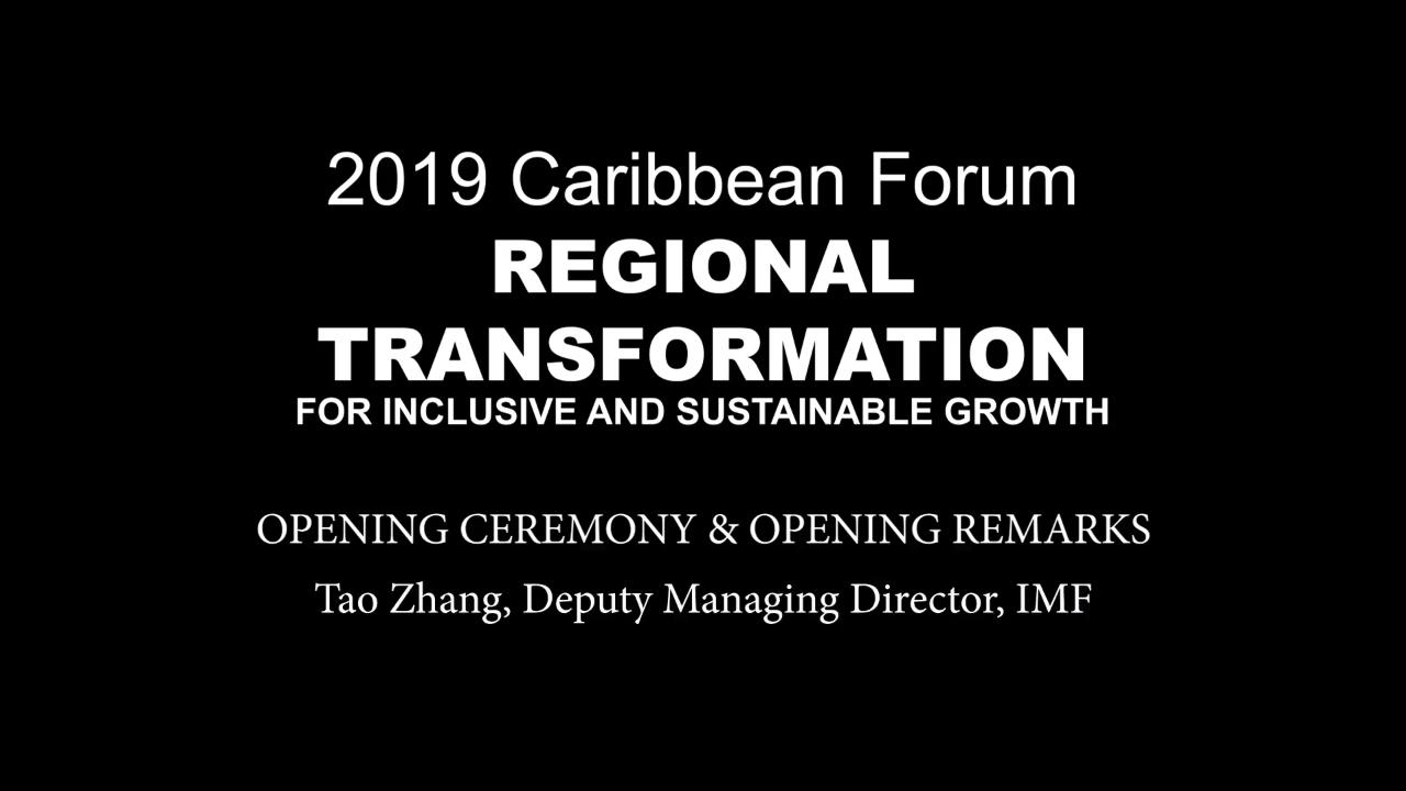 2019 Caribbean Forum: Opening Remarks by Tao Zhang