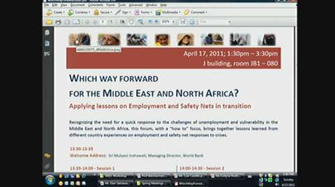 Which way Forward for the Middle East and North Africa? Applying Lessons on Employment and Safety Nets in Transition