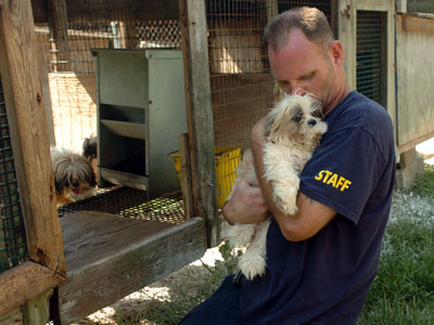 1000 Dogs Rescued from Puppy Mill