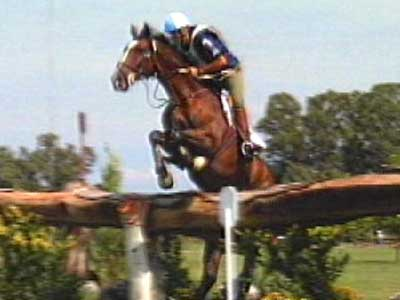 Horse Eventing B-roll