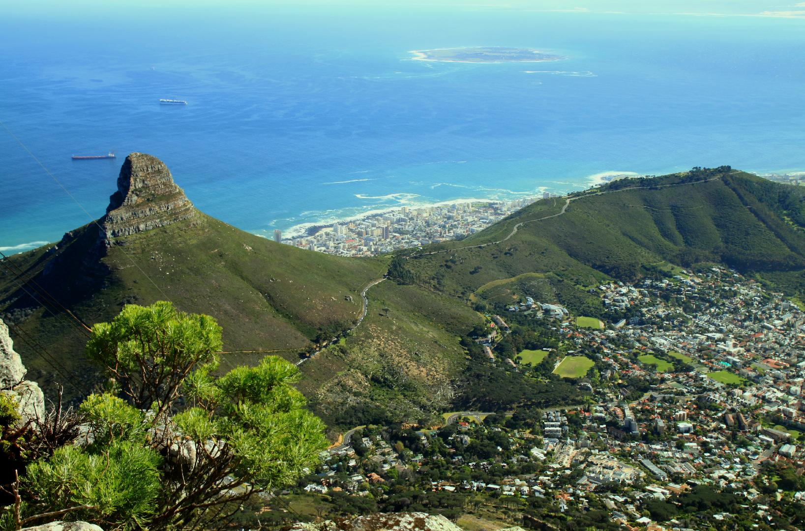 Cape Town: a wildlife lover's playground