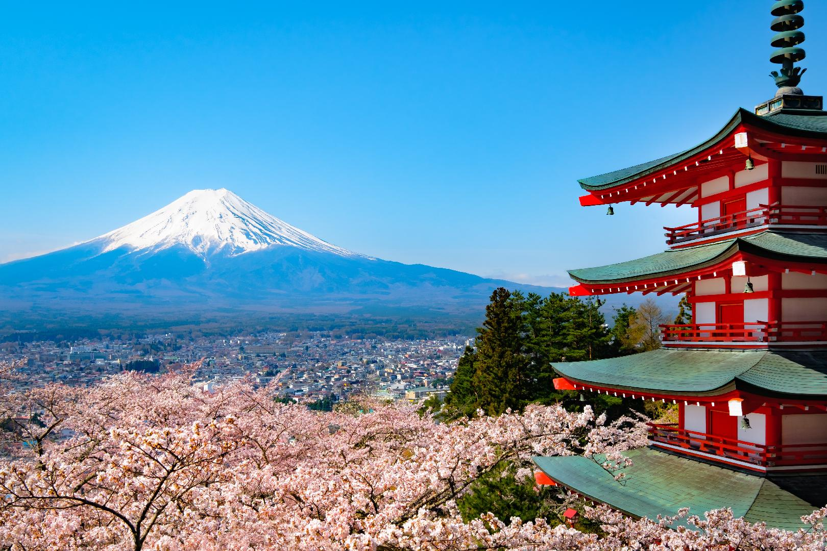 Yamanashi, Japan's surprise up-and-coming wine region
