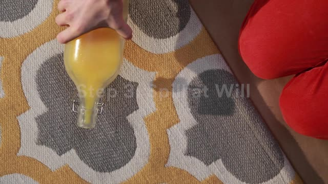 ScotchgardTM Rug Carpet Protector How To Apply